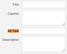 How To Write SEO Friendly Blog Posts Alt image text
